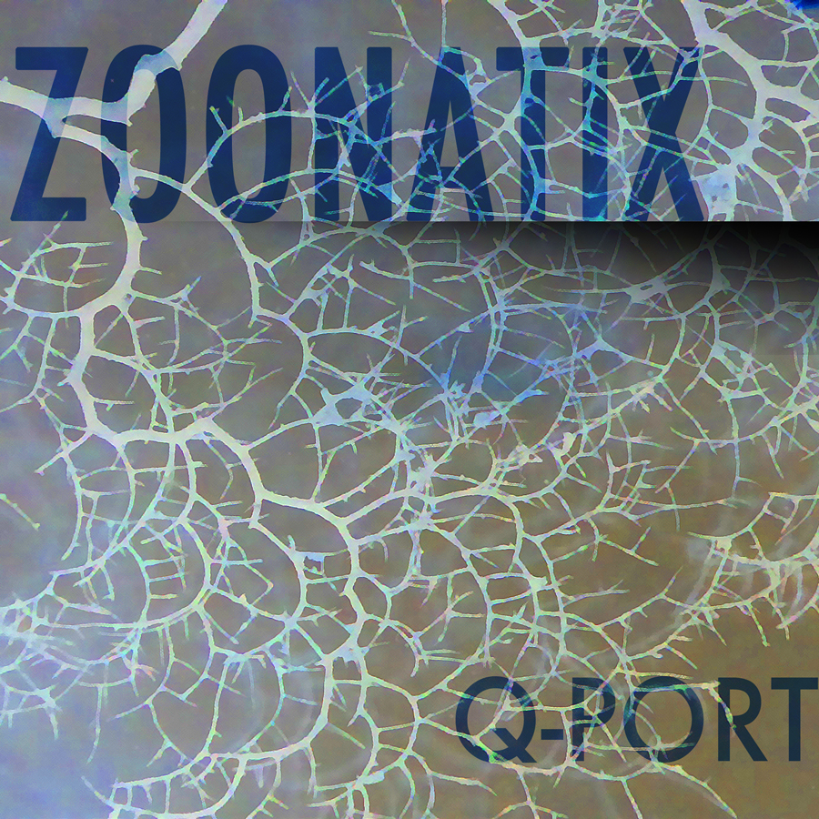 Zoonatix-Q-Port (Danilo Wimmer)